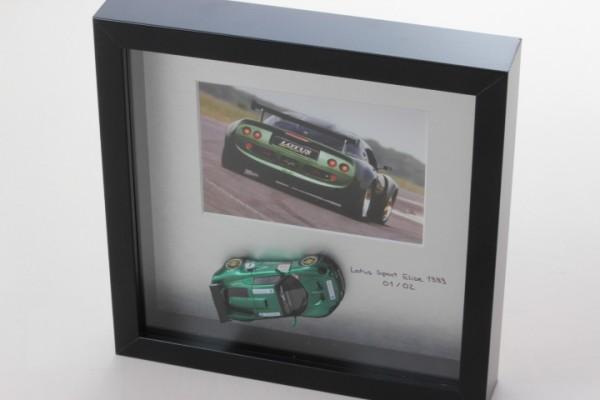 Diorama Lotus Motorsport Elise